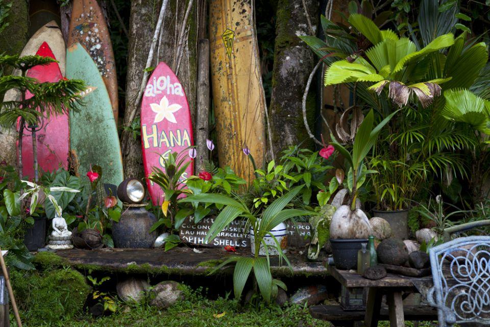 Tara-Maui-Serfing (2)