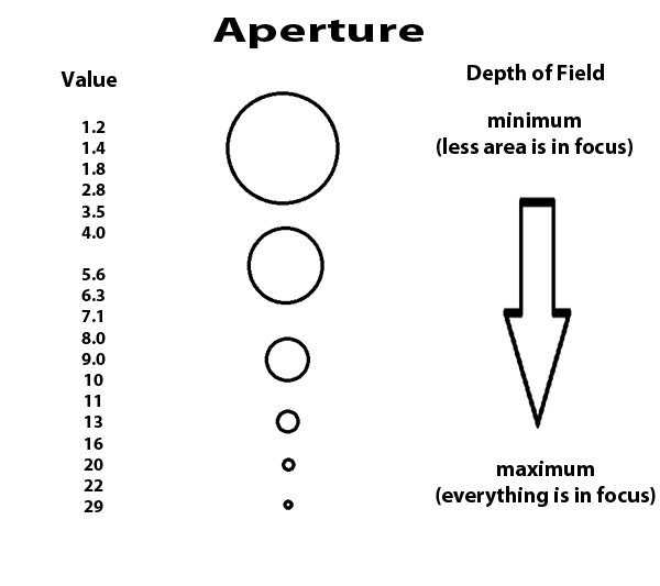 Photography courses textbook. Aperture in digital photography.