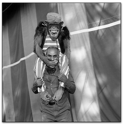 Photography courses and workshops - Indian Circus - Marry Ellen Mark (1)