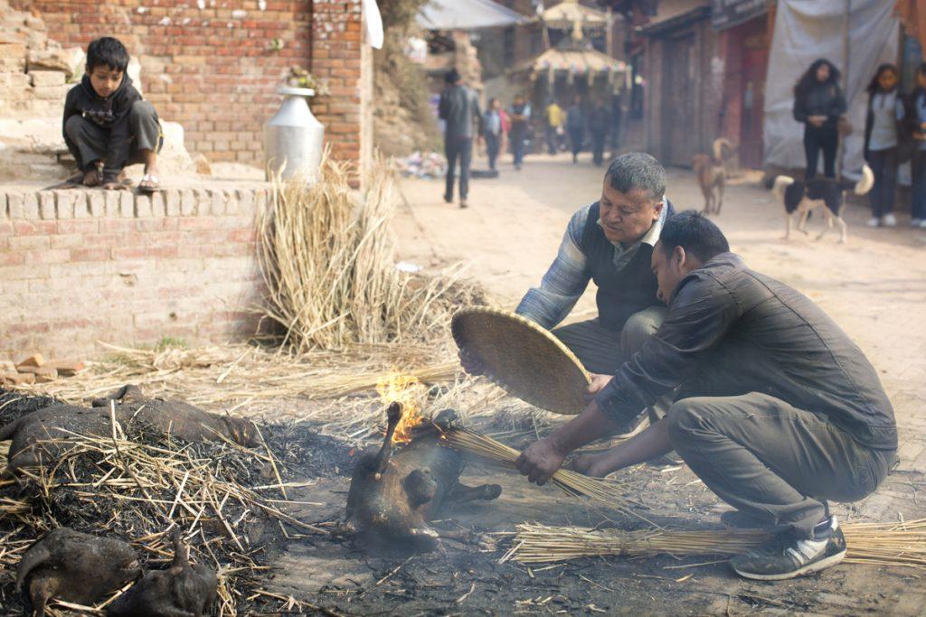 Nepal.choice078